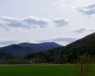 Vermont is Greening Up