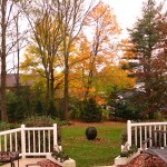 Back yard in autumn.